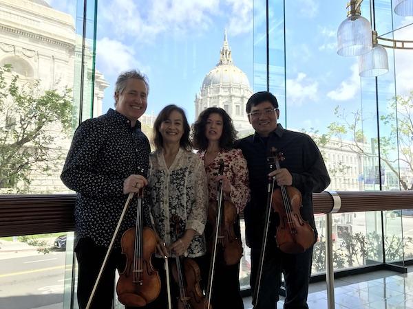violins copylr